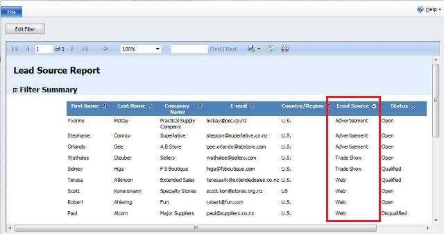 How To Create Lead Source Report In Dynamics Crm 2011? | Magnetism