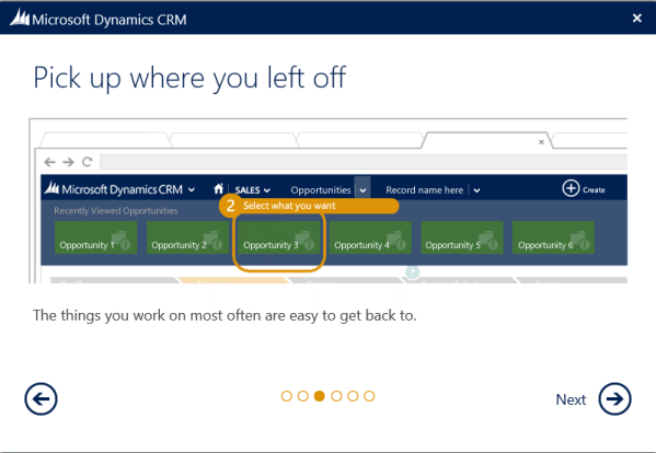 Getting Started with CRM 2013